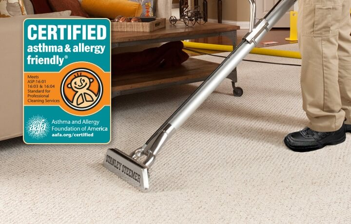 Stanley Steemer technician cleaning carpet with a carpet cleaning wand.