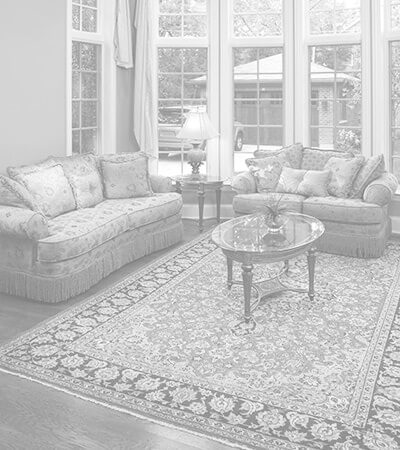 Oriental area rug laying in the middle of a clean living room.