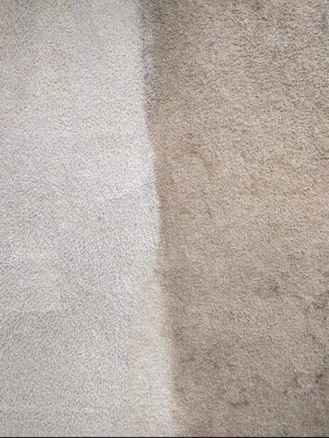 Side by side showing the difference carpet cleaning can make with Stanley Steemer Saginaw