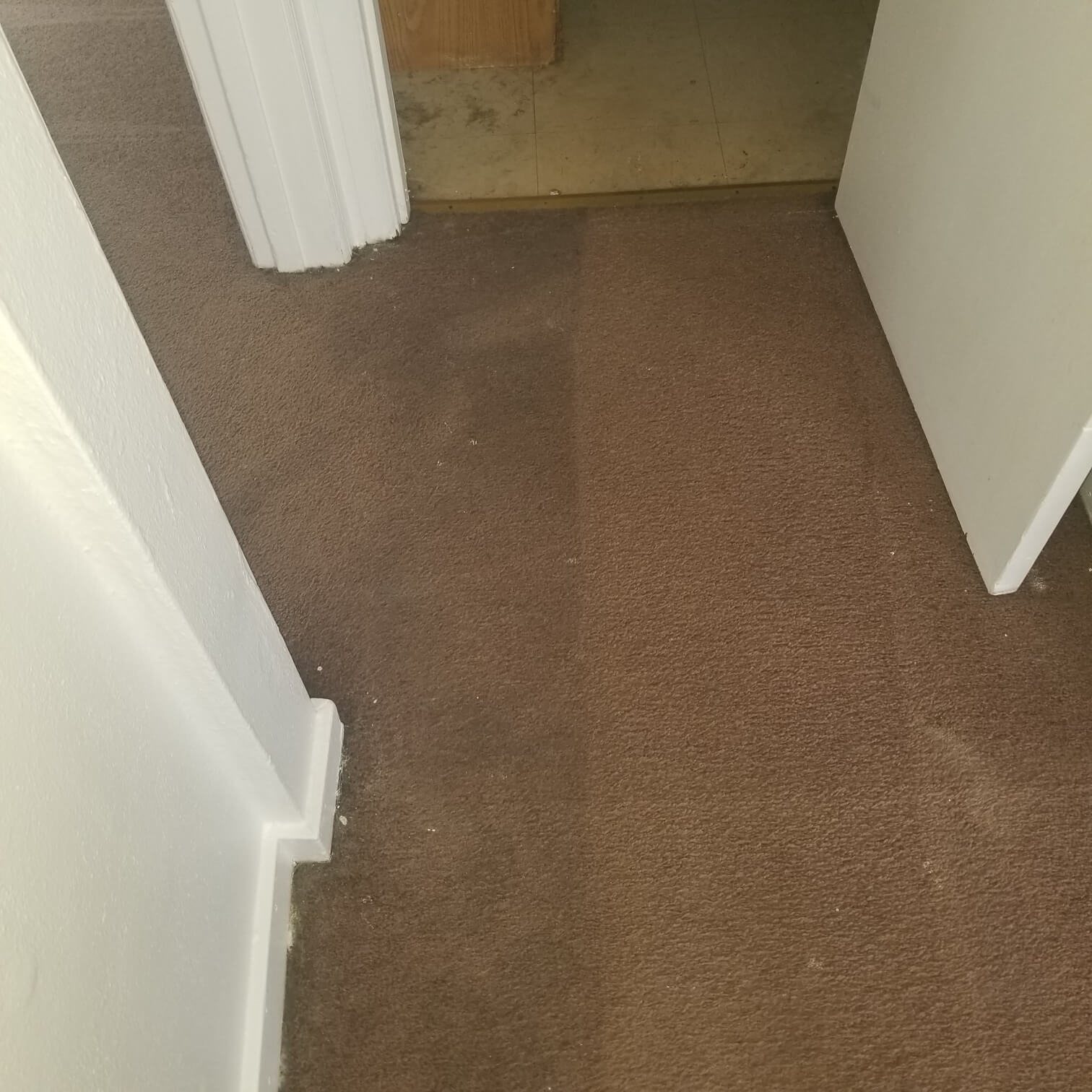 Before and after of a newly cleaned carpet from Stanley Steemer Rockford