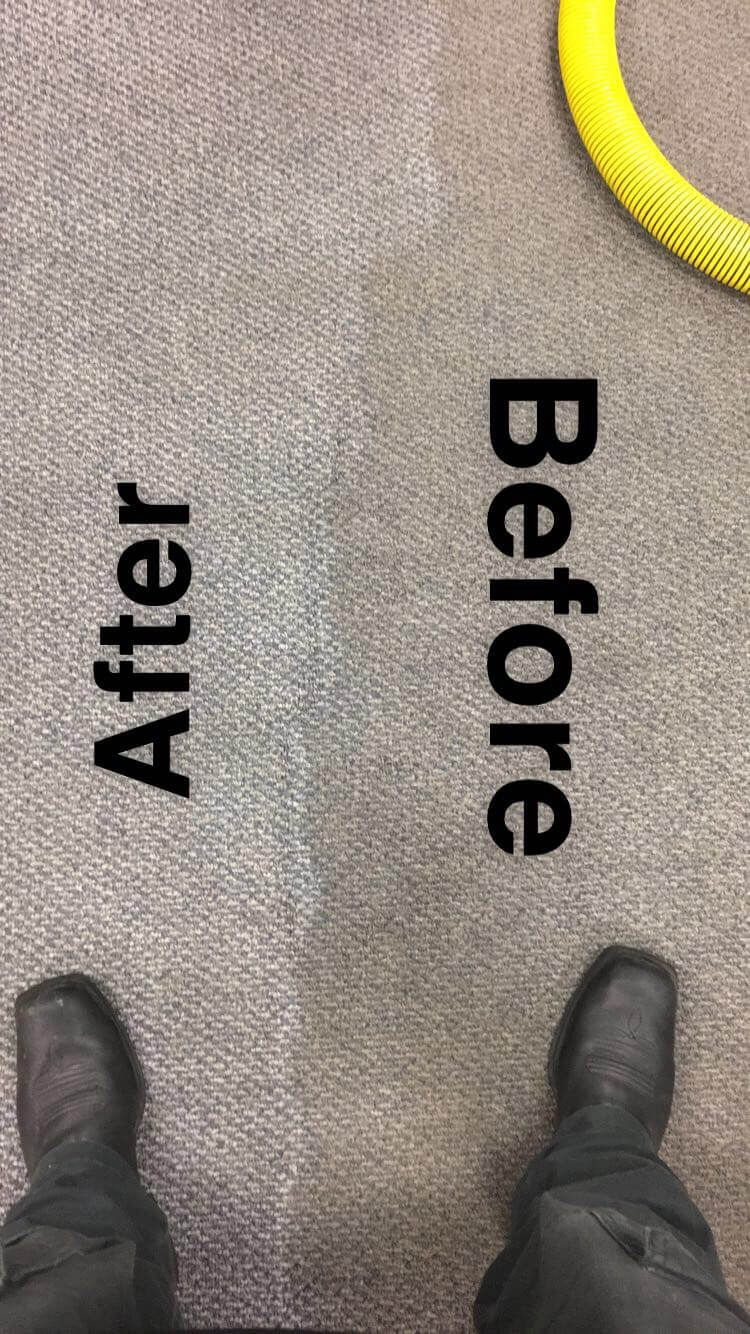 Before and after of a carpet cleaning from Stanley Steemer Rockford