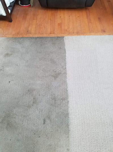 Stanley Steemer carpet cleaning exposes dirty carpet in Saginaw, Michigan.