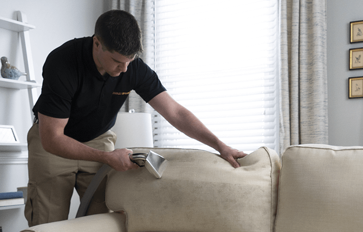Technician cleaning microfiber couch