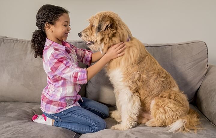 Young girl sitting with her dog on a couch.