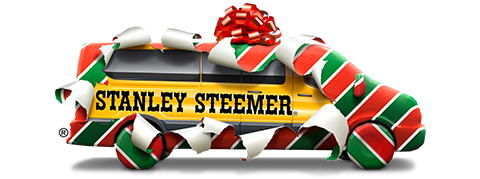 Stanley Steemer wrapped in gift paper