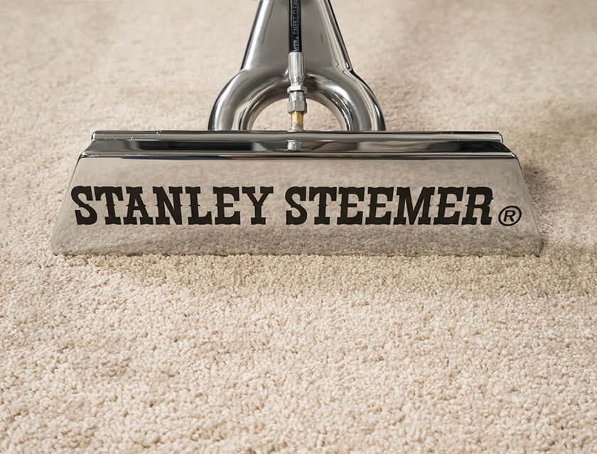 Home Business Cleaning Services Stanley Steemer