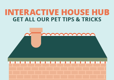 Text: Interactive House Hub - Get all our pet tips and tricks