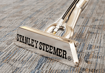 Stanley Steemer wand cleaning carpet