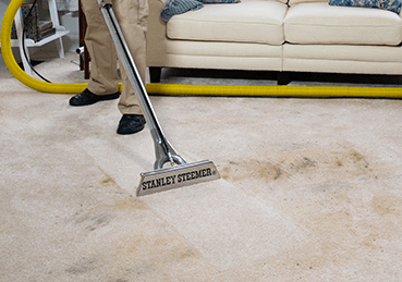 Stanley Steemer deep cleaning a dark stain on light colored carpet