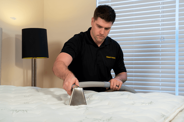 Stanley Steemer cleaning a mattress