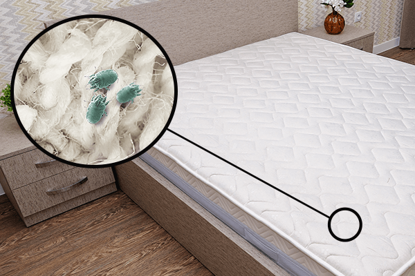 Mattress zoomed in on a depiction of dust mites