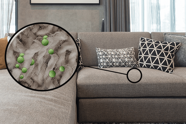 Couch zoomed into show depiction of bacteria