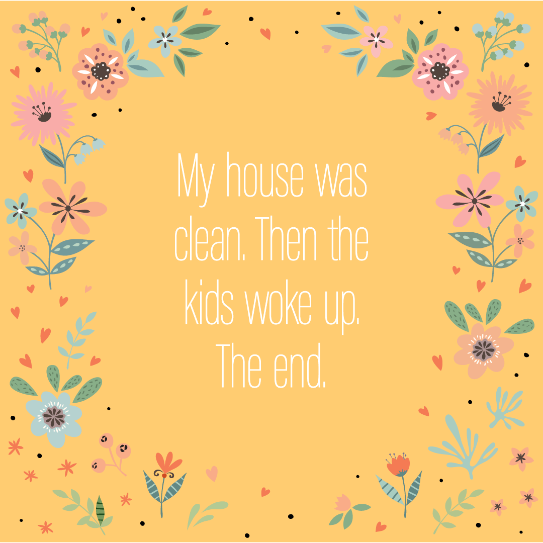 Text: My house was clean. Then the kids woke up. The end.