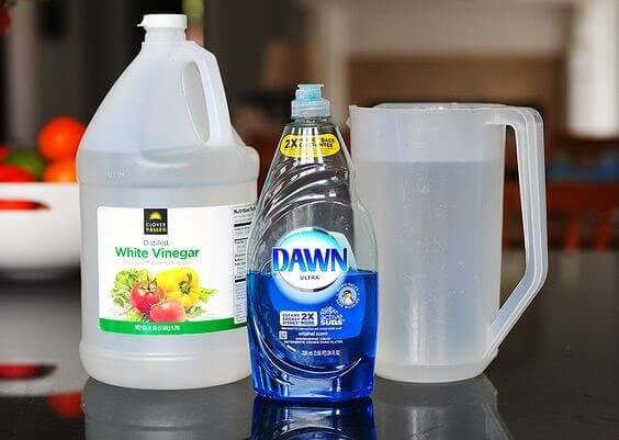 White vinegar, Dawn dish soap and a pitcher of water.
