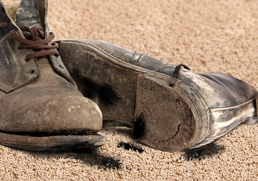 Dirty pair of work boots sitting on carpet.