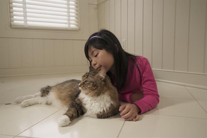 Young girl laying on a clean tile floor with a cat.